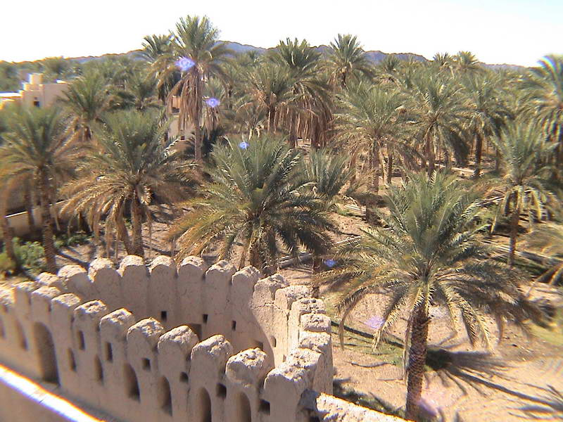 Surrounding countryside seen from an bandoned mud fort in rural Oman