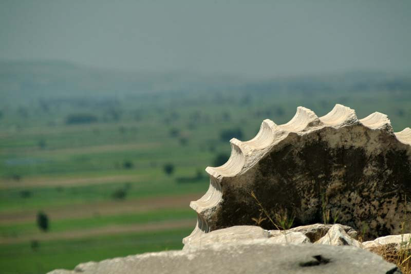 Detail of a column section gazing out at the valley beyond Preine, along the Agean coast, eastern Turkey.