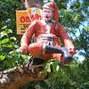 An abandoned St Nicholas in a tree in rural Sri Lanka?!