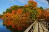 The boardwalk at Stony Brook Audubon.