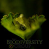 Biodiversity Group, _DSC0453