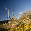 Biodiversity Group, DSC06510