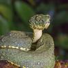 Biodiversity Group, IMG_0573