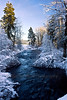 Snowy TroutCreek_6632