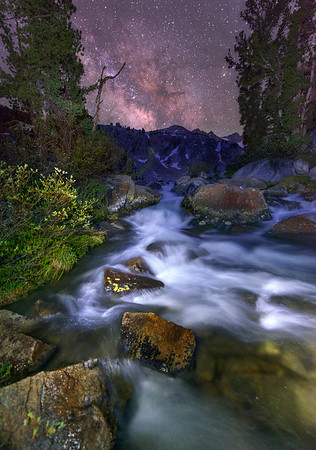 Lightpainted foliage and headwater of Lyell Fork Creek with Donahue Pass in the background on the JMT.