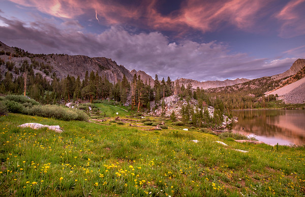 Wildflowers near Purple Lake at sunset along the JMT.