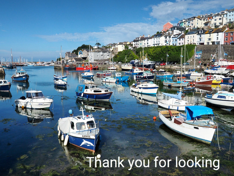 Brixham Harbour:  Devon