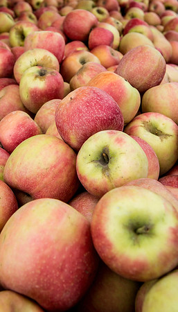 Apples at farmers' market. Keller, Texas