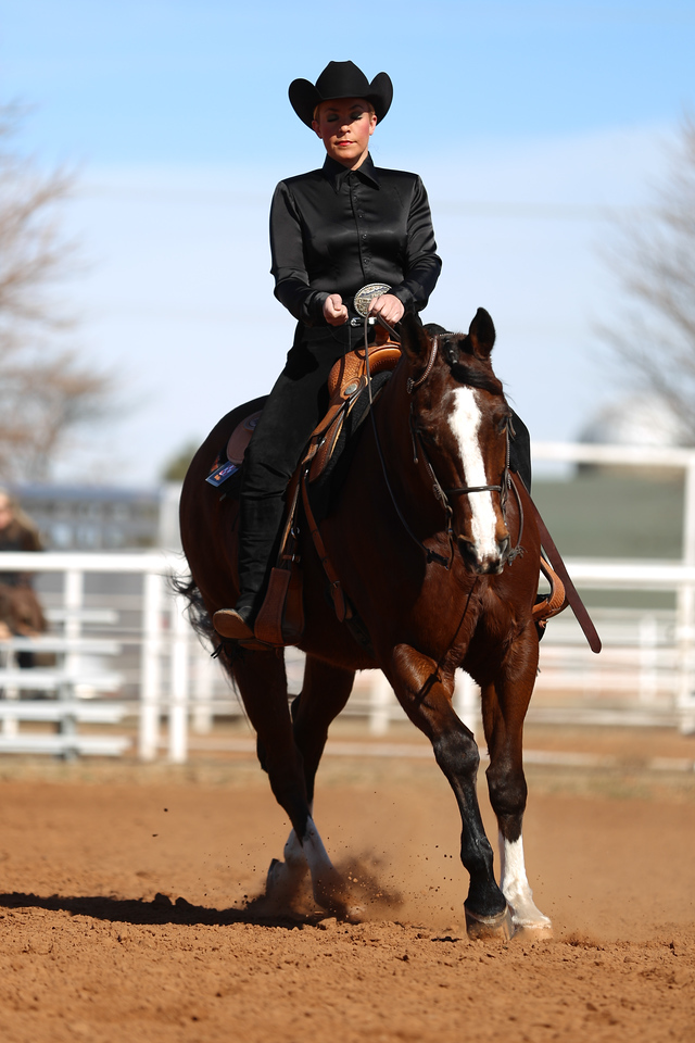 Oklahoma State University Cowgirls vs. the Kansas State University Wildcats in NCAA Equestrian in Stillwater, OK on February 15,  2014. Photos by Mitchell Alcala/Ostatephoto.com