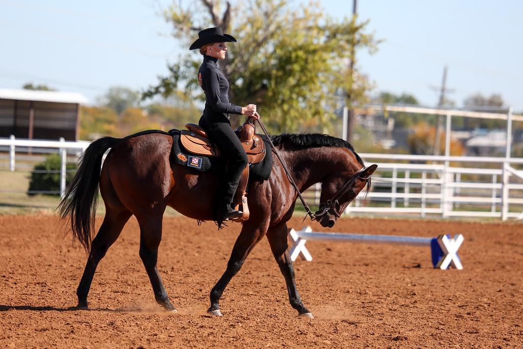 2013 Oklahoma State University Cowgirl Equestrian Team take compete against South Dakota State University at the Oklahoma State University Animal Science Arena on November 1, 2013. Photos by Mitchell Alcala/Ostatephoto.com