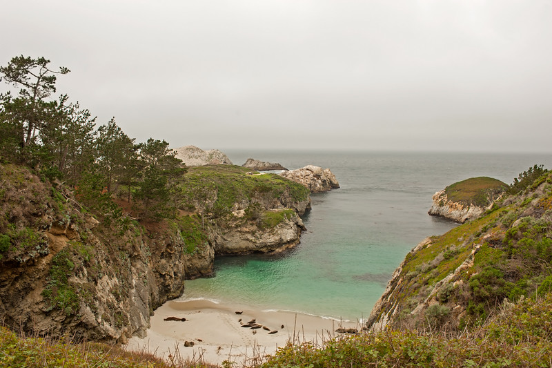 point lobos state park  carmel california