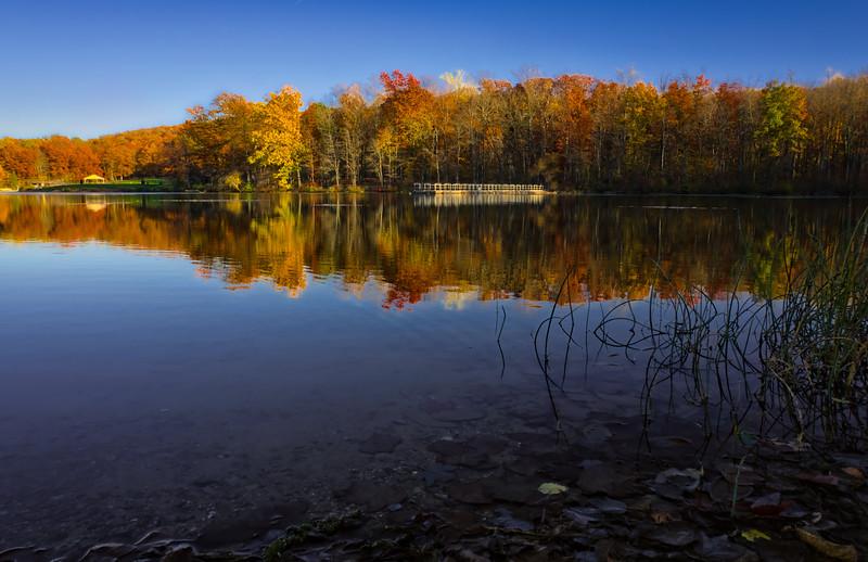 1093 - Autumn 2016 - Shore to Shore French Creek (p)