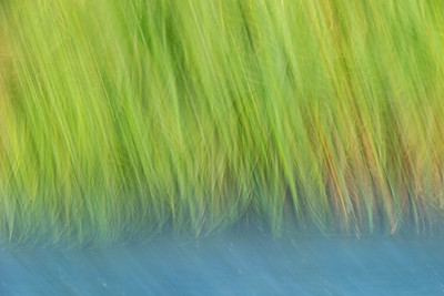 riverblurkatmaialaska