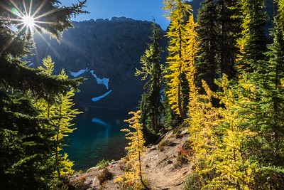Larches at Blue Lake