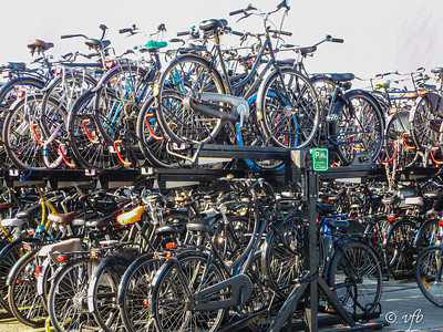 Amsterdam Bike Rack