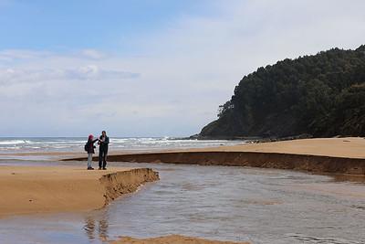 Drowns at La Griega beach