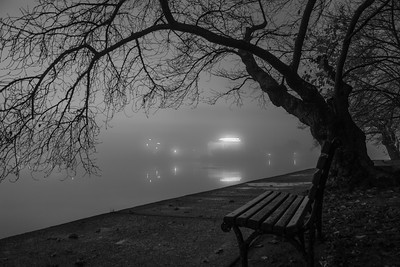 Fog over the Tidal Basin