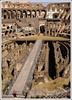 Rome6335Colosseum