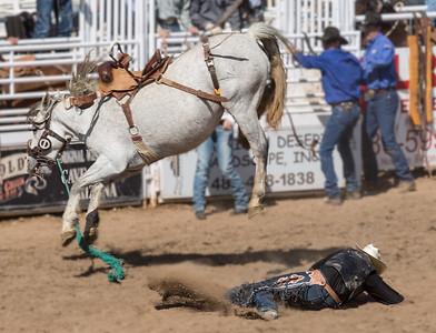 Cowboy flies off bronco at Cave Creek Rodeo 30 March 2014