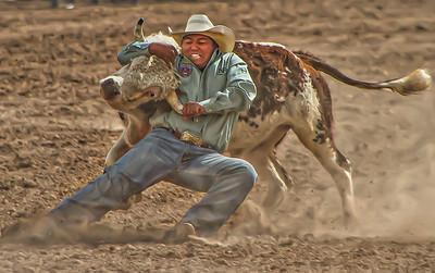 Native American Cowboy Wrestles down a Steer-Edit-2