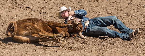 Cowboy has steer by horn at Cave Creek Rodeo 30 March_