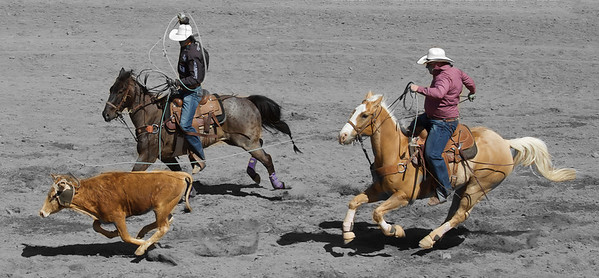 Team steer roping at Cave Creek Rodeo 30 March 2014_