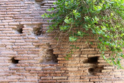 Old Stone Walls at the Roman Forum in Italy