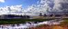 grassy_waters_plain_wide_16k_Txt