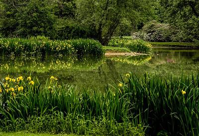 Old Westbury Gardens May 22 2013-7-85