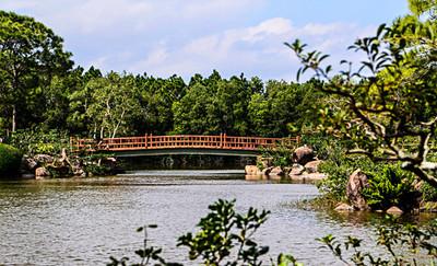 Morikami Museum and Nature Gardens-Delray 2-13-2014-8439