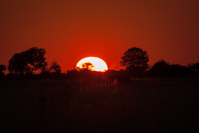 Sunset over the Okavango delta