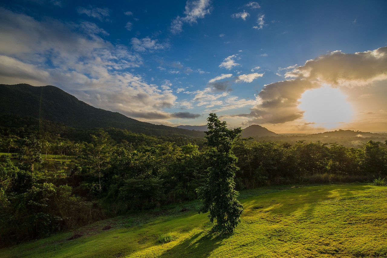 Sunrise over Daintree