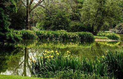 Old Westbury Gardens May 22 2013-7-81