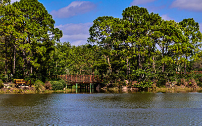 Morikami Museum and Nature Gardens-Delray 2-13-2014-8415