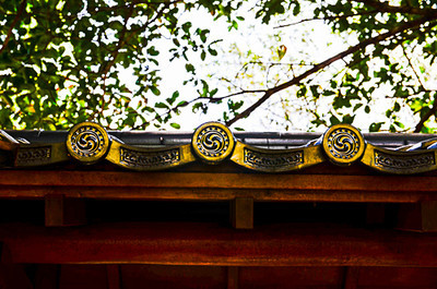 Morikami Museum and Nature Gardens-Delray 2-13-2014-8400