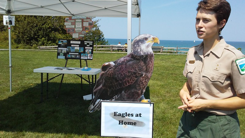Betsy Scott - The News-Herald <br> Lake Metroparks featured eagle education at its Best of the Bluffs event Aug. 20 at Lake Erie Bluffs in Perry Township.