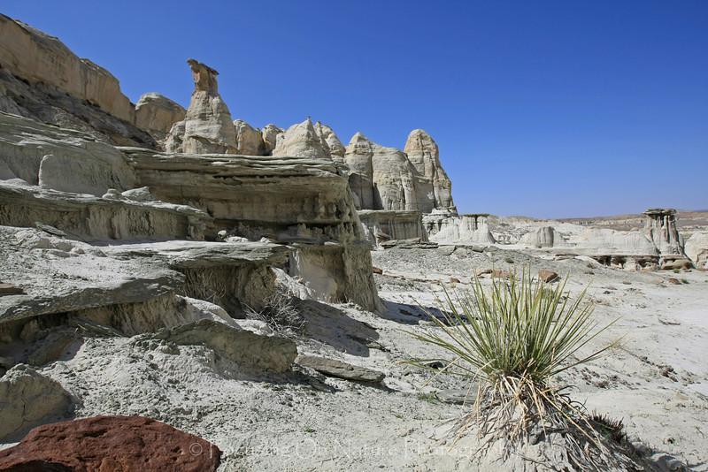 White Rocks Scenic I