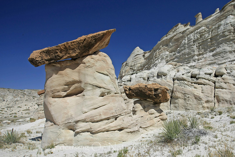 White Rocks Hoodoo