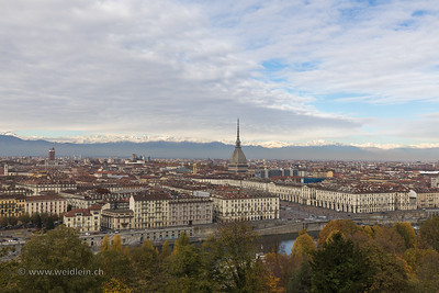 Turin overview