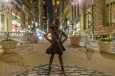 Resist Fearless Girl