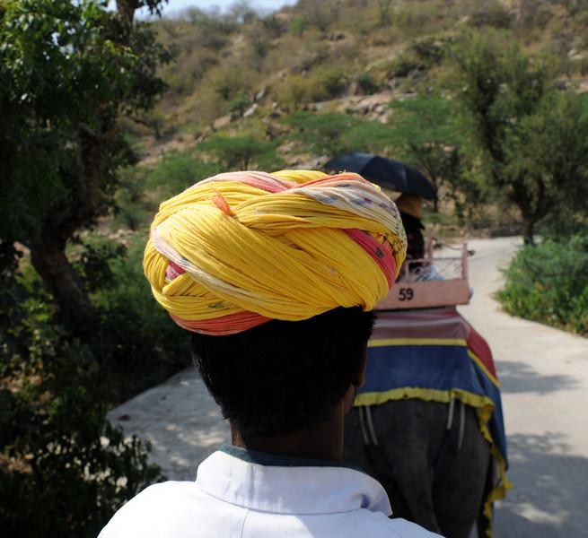 Mahout, Jaipur