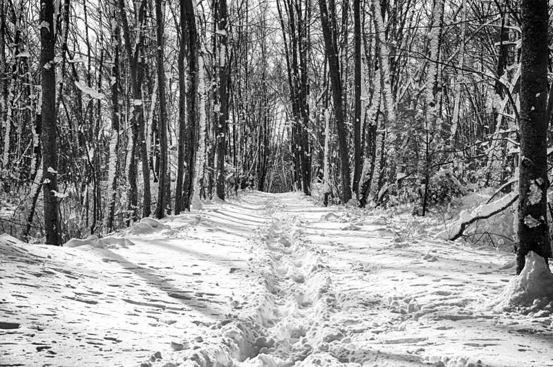 Snow along the path