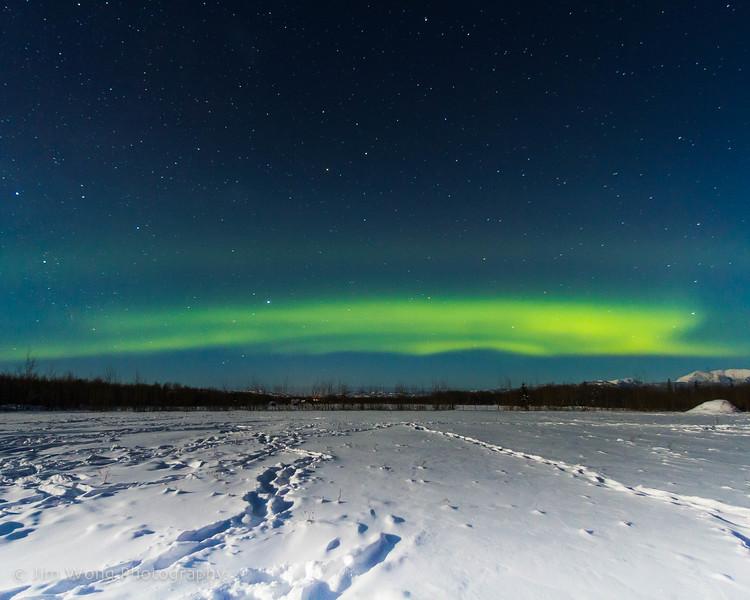 Aurora borealis, Whitehorse