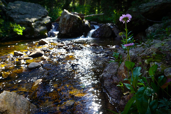 Fall River, Fall River Rd.