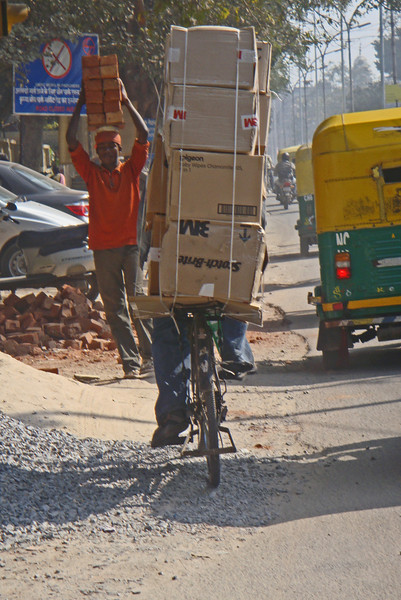 Power bicyclist passes an equally amazing brick hauler. New Delhi.