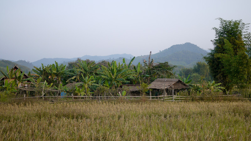 Rice paddies and wooden houses outside of Hongsa, Laos.