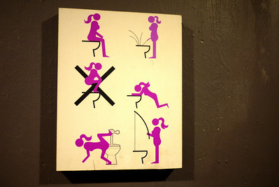 Intriguing sign in a Malaysian bathroom - so wait...I can fish in the toilet but no squatting?