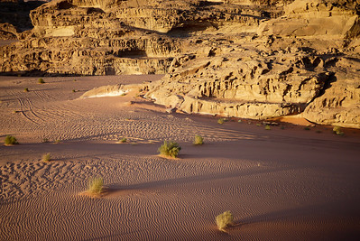 Desert sands at sunset, Wadi Rum, Jordan
