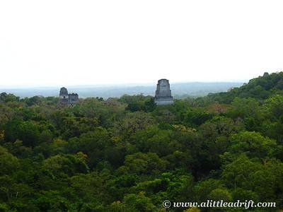 Overlooking Tikal