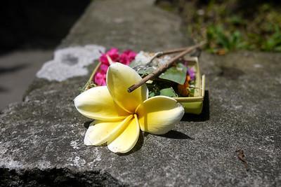 Curbside Balinese offering